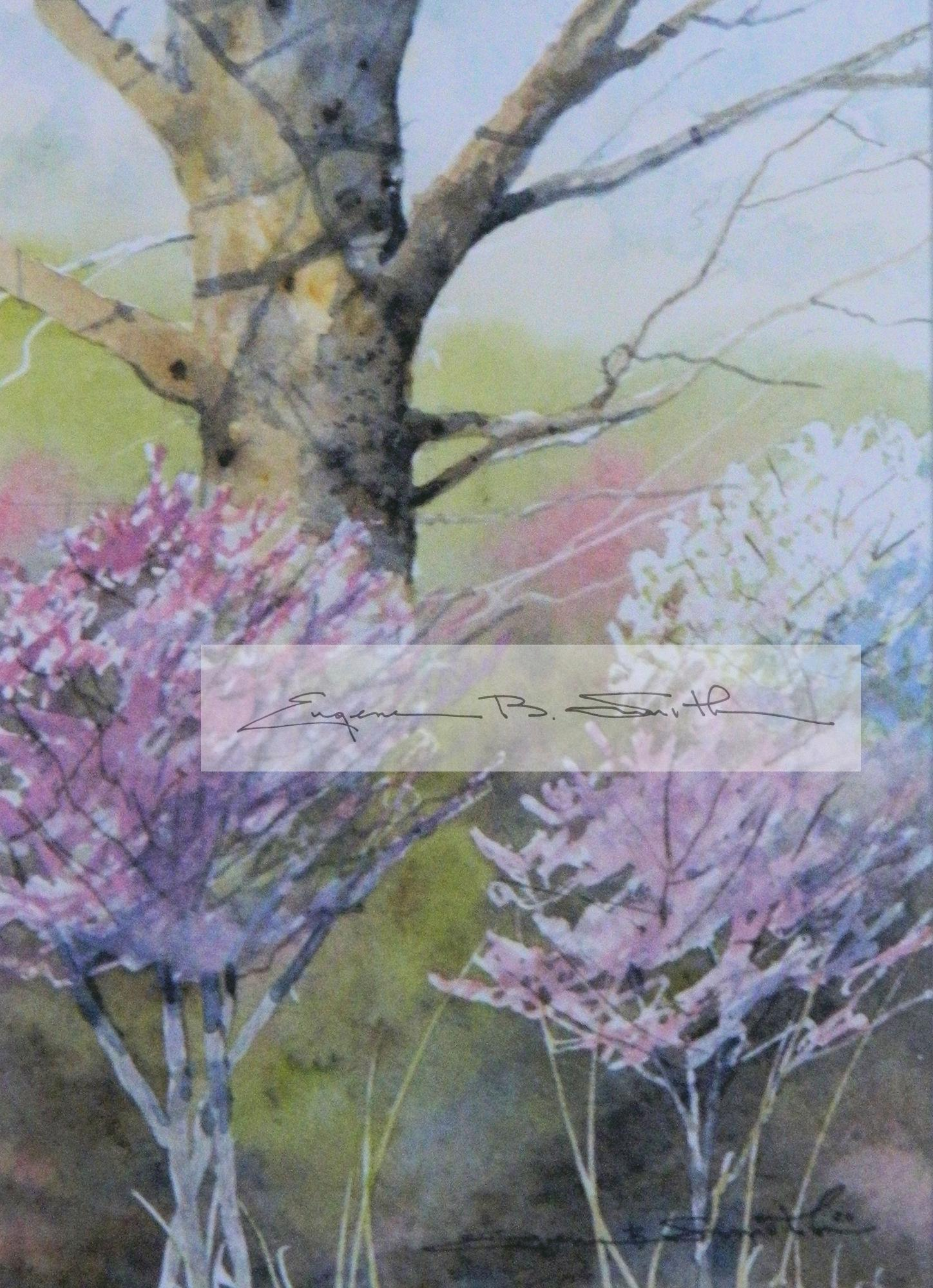 Sycamore Spring ****SOLD****