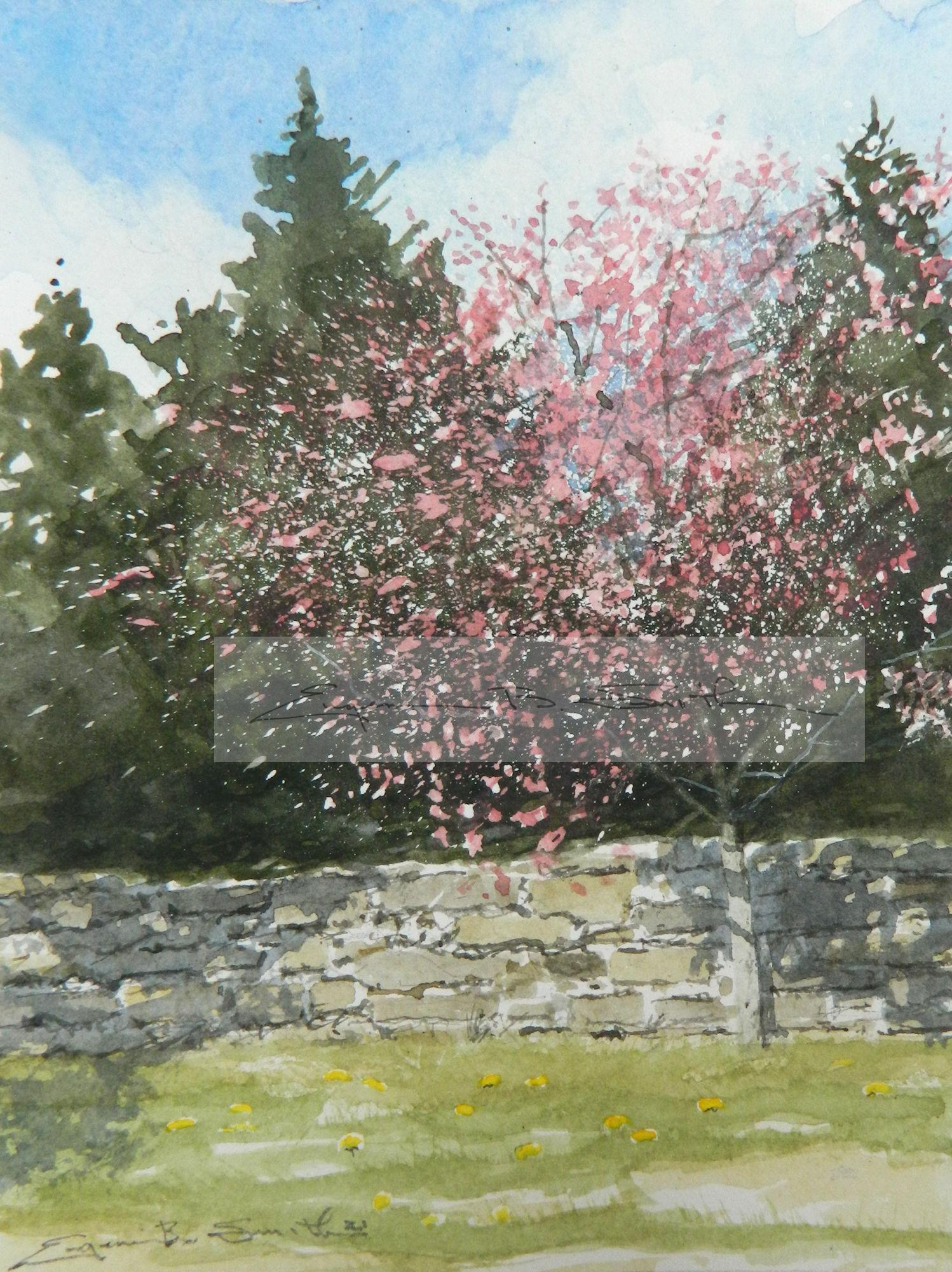 Red Buds at Stone Wall ****SOLD****